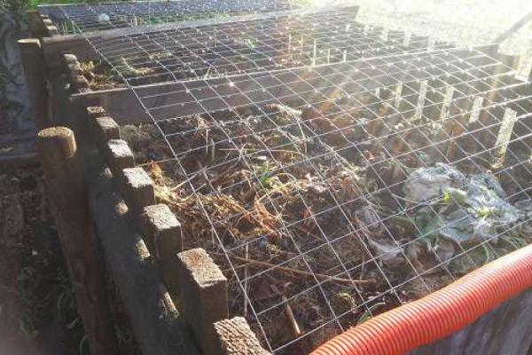 Kompost: nicht zu feucht…