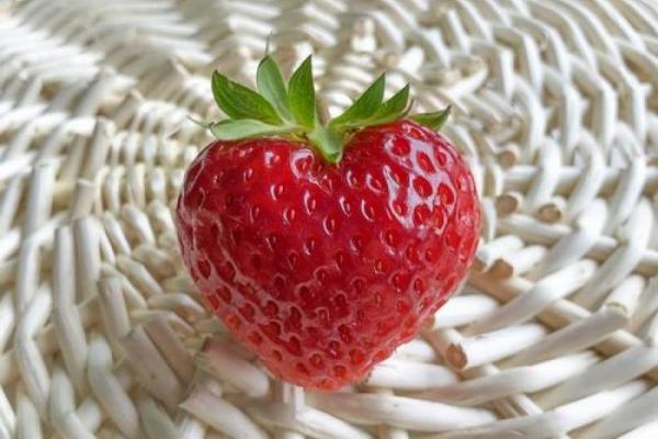 Erdbeerpflanzzeit!