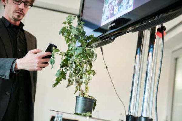 Preisgekrönte Pflanzenschutz-App
