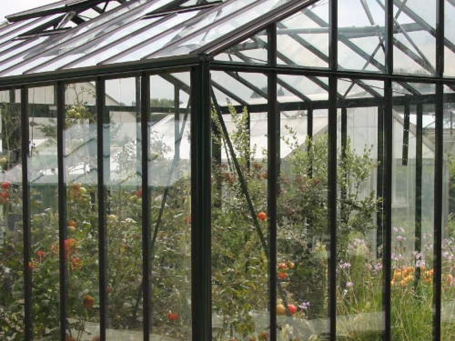Erfolgreich Gärtnern im Gewächshaus
